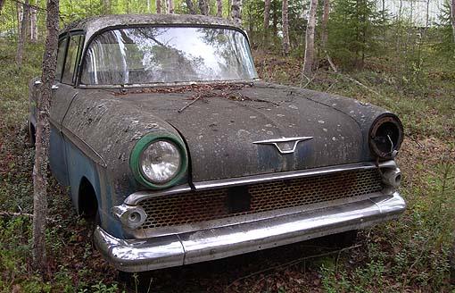 Bil i skogen. Foto: Gunnar Bränström